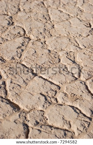 Cracked earth texture or background