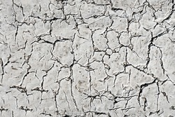 cracked earth texture. texture of cracked plaster.