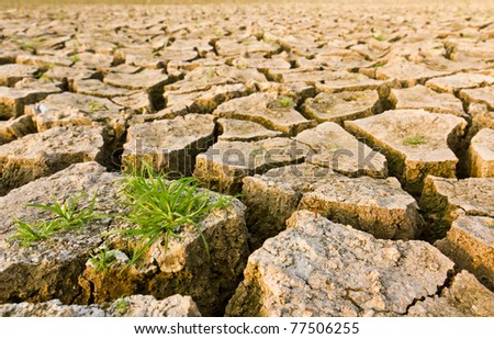 Cracked earth with grass , metaphoric for climate change and global warming.