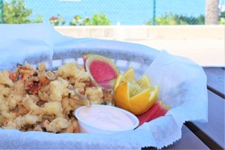 cracked / fried conch with a view of the ocean