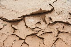 cracked ground