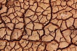Cracked ground or mud cracks on earth surface background. It sedimentary structures formed as muddy sediment dries and contracts. It arid season on summer and hot climate