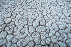 Cracked land texture. Beautiful nature background for your project
