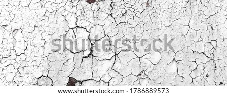 Cracked oil paint on aged metal surface. Cool grunge crackle texture. Fractured pattern. Light tones. Black and white background. Stock photo ©