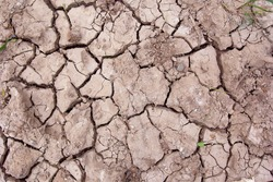 Cracked soil texture (1)