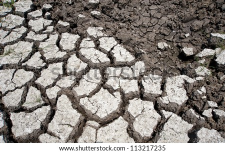 Cracked soil texture