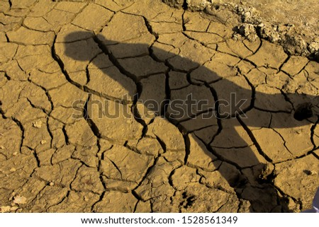 Cracked surface. Cracked dirt stock image. #1528561349