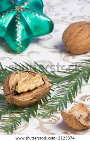 Cracked walnut on fir branch on holiday napkin with Christmas green star