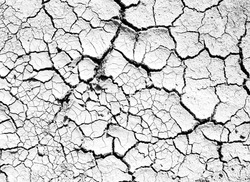 Cracks of topsoil, white and black surfaces for texture and background
