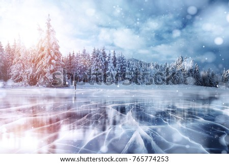 Cracks on the surface of the blue ice. Frozen lake in winter mountains. It is snowing. The hills of pines. Carpathian Ukraine Europe. #765774253