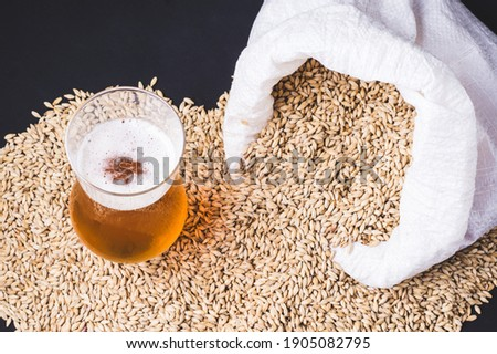 Craft beer in glass and grains of barley pale malt, poured out of a canvas bag. Ale or lager from pilsner malt. Stok fotoğraf ©