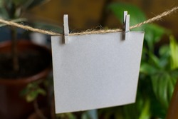 Craft blank cards on rope at white wall background. Creative reminder, small sheets of paper on old clothespins, memo or congratulations backdrop