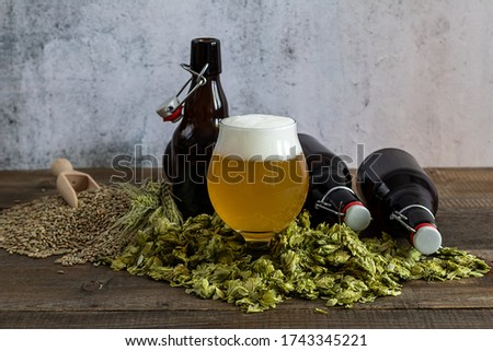 Craft pale ale in a glass with beer growlers and green dry hops. Home brewing. Copy space. Stockfoto ©