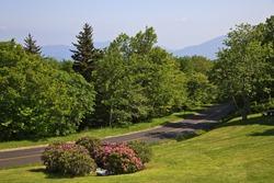 Craggy Gardens Picnic Area off the Blue Ridge Parkway