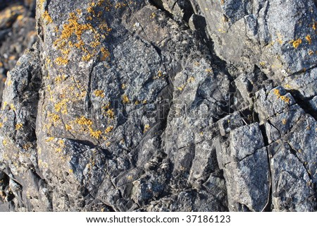 Craggy Rock Detail