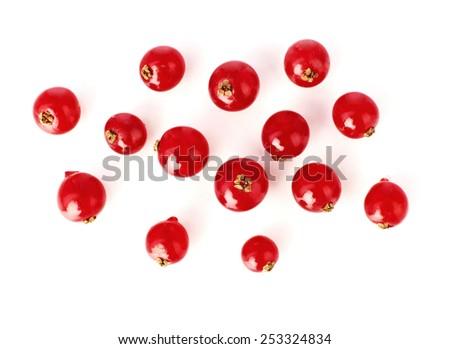 Cranberries #253324834