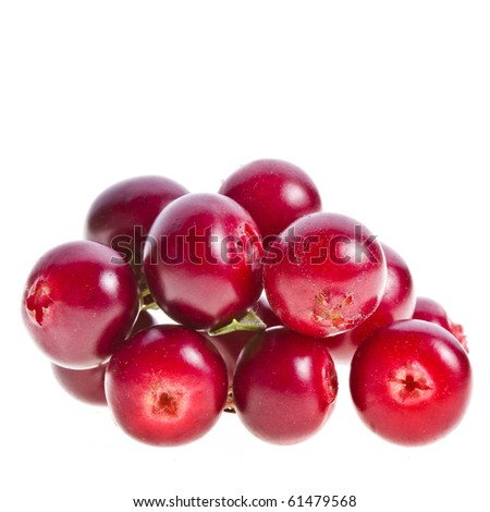 cranberries cowberries heap pile close up macro  isolated on white background