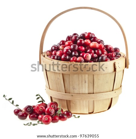 cranberries in the basket isolated on white background