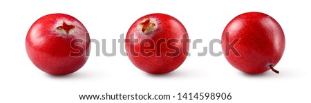 Cranberries isolated. Cranberry on white. Full depth of field. With clipping path.