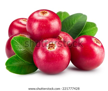 Shutterstock cranberries isolated on white Clipping Path