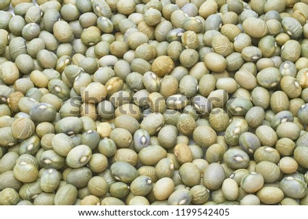 Cranberry Bean texture background. Also called Borlotti Bean or Shell Bean. Cranberry beans are rounded with red specks.