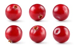 Cranberry. Berry isolated on white background. Collection. Full depth of field.