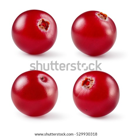 Shutterstock Cranberry. Fresh raw berries isolated on white background. Collection. Full depth of field.