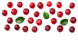 Cranberry isolated on white. Full depth of field. top view