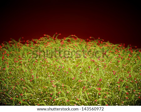 Cranberry thicket in the evening glow. Healthy lifestyle