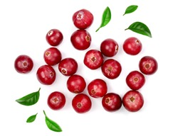 Cranberry with leaf isolated on white background closeup top view