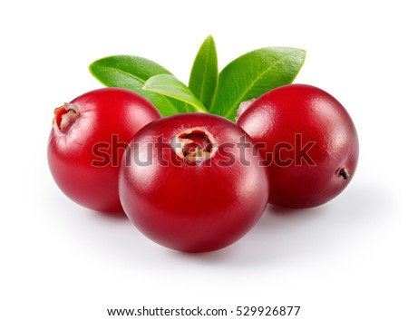 Shutterstock Cranberry with leaves isolated on white. With clipping path. Full depth of field.