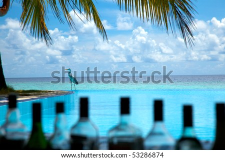 Crane relaxing on infinity pool! - stock photo