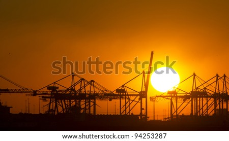 Cranes at sunset, Rotterdam, The Netherlands