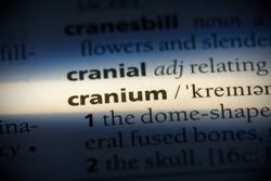 cranium word in a dictionary. cranium concept, definition.