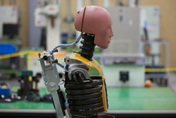 Crash Test Dummy in the Laboratory of a Car Manufacturer in Japan.
