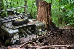 crashed jeep in the jungle
