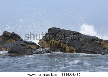 Crashing Waves in Maine- Fantastic for a background or print!