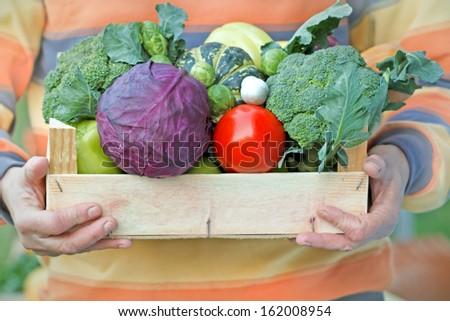 Crate full of organic food