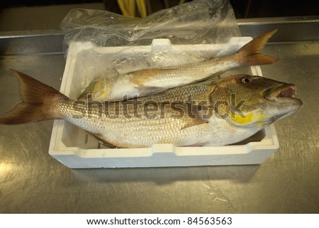Crate of carps