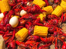 Crawdads on the boil in a pot