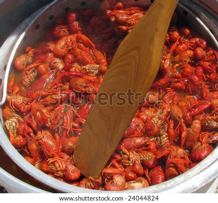 Crawfish being stirred with a boat paddle with being cooked on an outdoor cooker.
