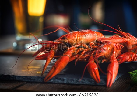 Crawfish. Boiled red crayfish or crawfish with a beer and herbs on a slate table. Close up. Crayfish party, restaurant, cafe, pub menu ストックフォト ©