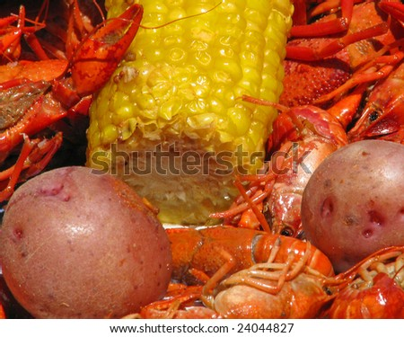 Crawfish potatoes, and corn cob spread out on table closeup.