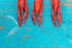 crayfish on a blue wooden background. Fresh sea food background