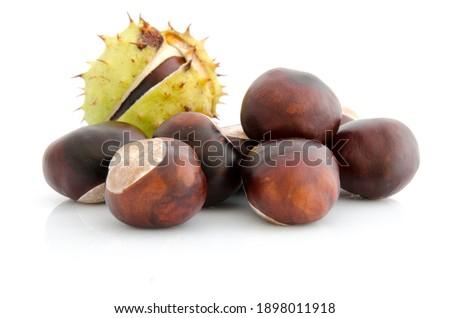 Crazy chestnut, Indian chestnut. Horse chestnut fruits Foto stock ©