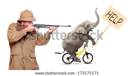 Crazy hunter shooting to crazy elephant. Funny picture from Africa.