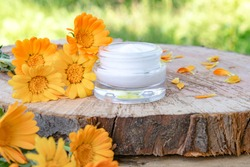 Cream for body care with calendula. Fresh orange calendula flowers on a wooden background in nature. Cosmetic cream for cleansing the skin with calendula flowers. Medical Dermatology.