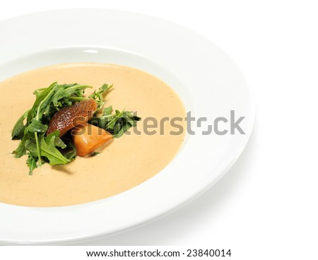 Cream of Mushroom Soup Dressed with Greens and edible Boletus. Isolated on White Background