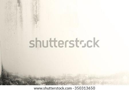 cream vintage cement wall...
