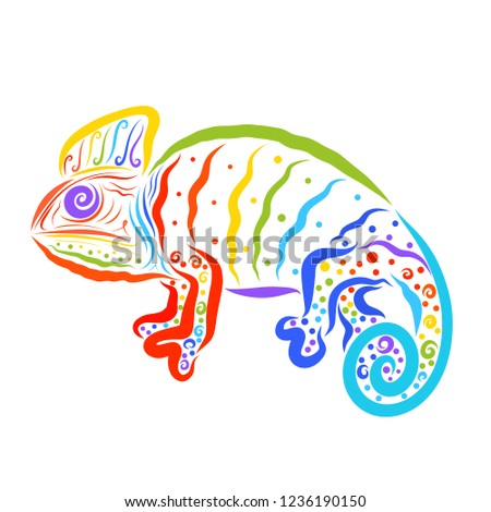 Creatine Chameleon With A Pattern Seven Colors Of The Rainbow